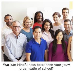 Mindfulness voor organisaties, scholen en bedrijven