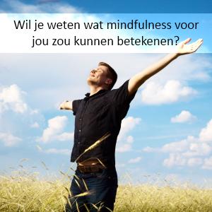 Mindfulness workshops en trainingen voor beginners bij Mindfulness-Rotterdam