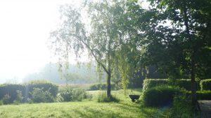 mindfulness zomerweek